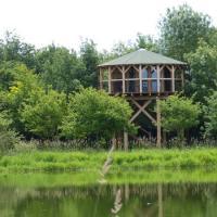 le nid, tout près de l'étang