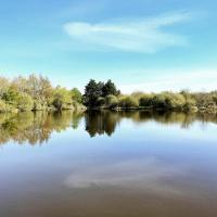 vue sur l'étang