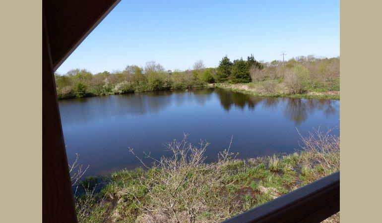 la vue sur l'étang
